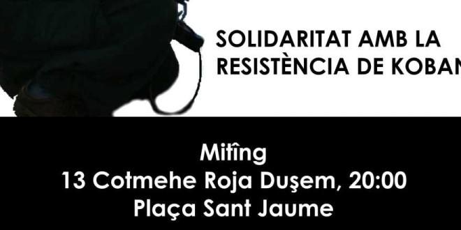 Solidaritat amb Kobanê