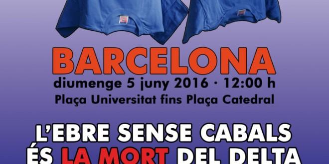 Manifestació a Barcelona de la Plataforma en defensa de l'Ebre