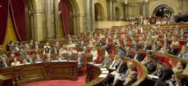 DAVANT EL TEATRE BURGÈS DE LES ELECCIONS: ORGANITZACIÓ I LLUITA!