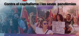 Dones organitzades contra el capitalisme i les seves pandèmies